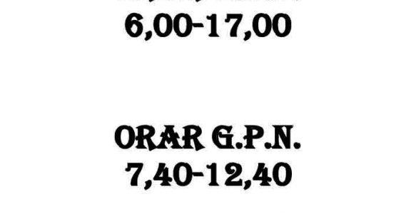 ORAR GPP ȘI GPN